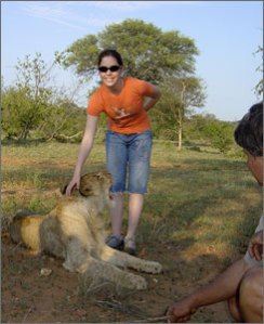 Lion cub with teen in Tshukudu (taken 2008). Source: USA Today